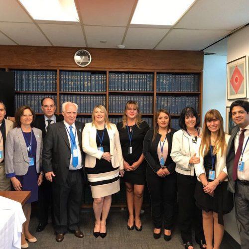 El Superior Tribunal de Justicia participó de la reunión del Comité de Descolonización de la ONU